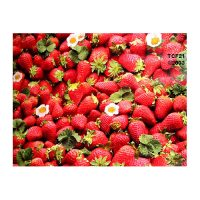 oil cloth starwberry