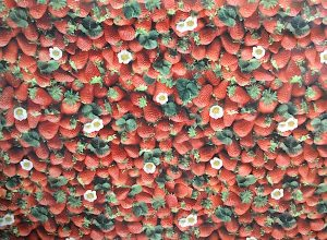 oilcloth starwberry