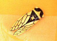 cicada_magnet10