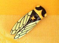 cicada_magnet9