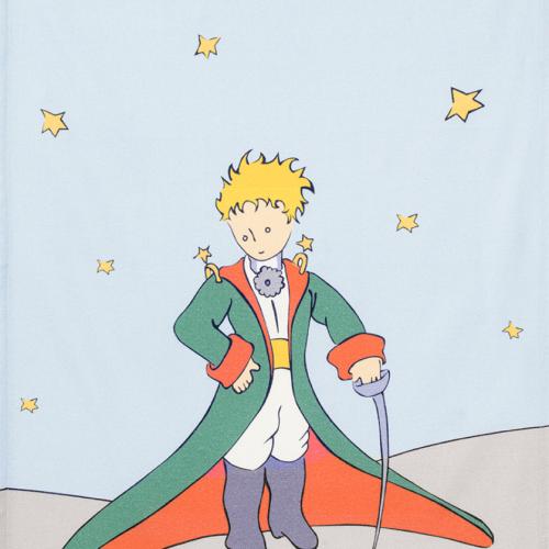 petit prince towel